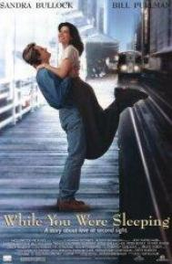 While You Were Sleeping poster free full movie