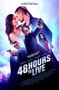 48 Hours to Live poster free full movie