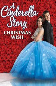 A Cinderella Story: Christmas Wish poster free full movie