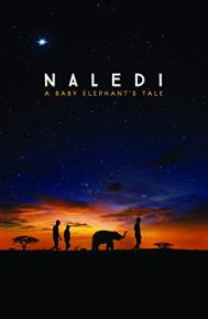 Naledi: A Baby Elephant's Tale poster free full movie