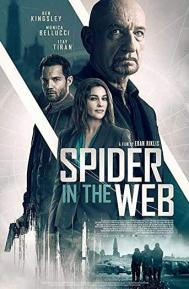 Spider in the Web poster free full movie