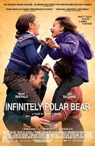 Infinitely Polar Bear poster free full movie