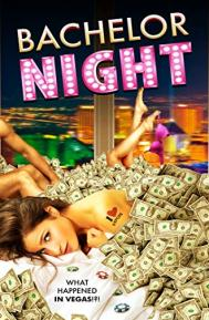 Bachelor Night poster free full movie