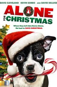 Alone for Christmas poster free full movie