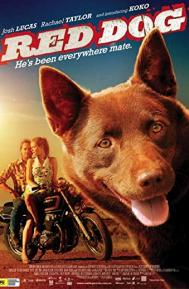 Red Dog poster free full movie