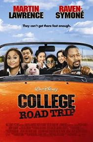 College Road Trip poster free full movie