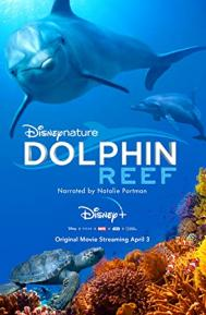 Dolphin Reef poster free full movie