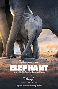 Elephant poster free full movie