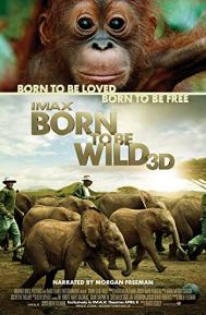 Born to Be Wild poster free full movie